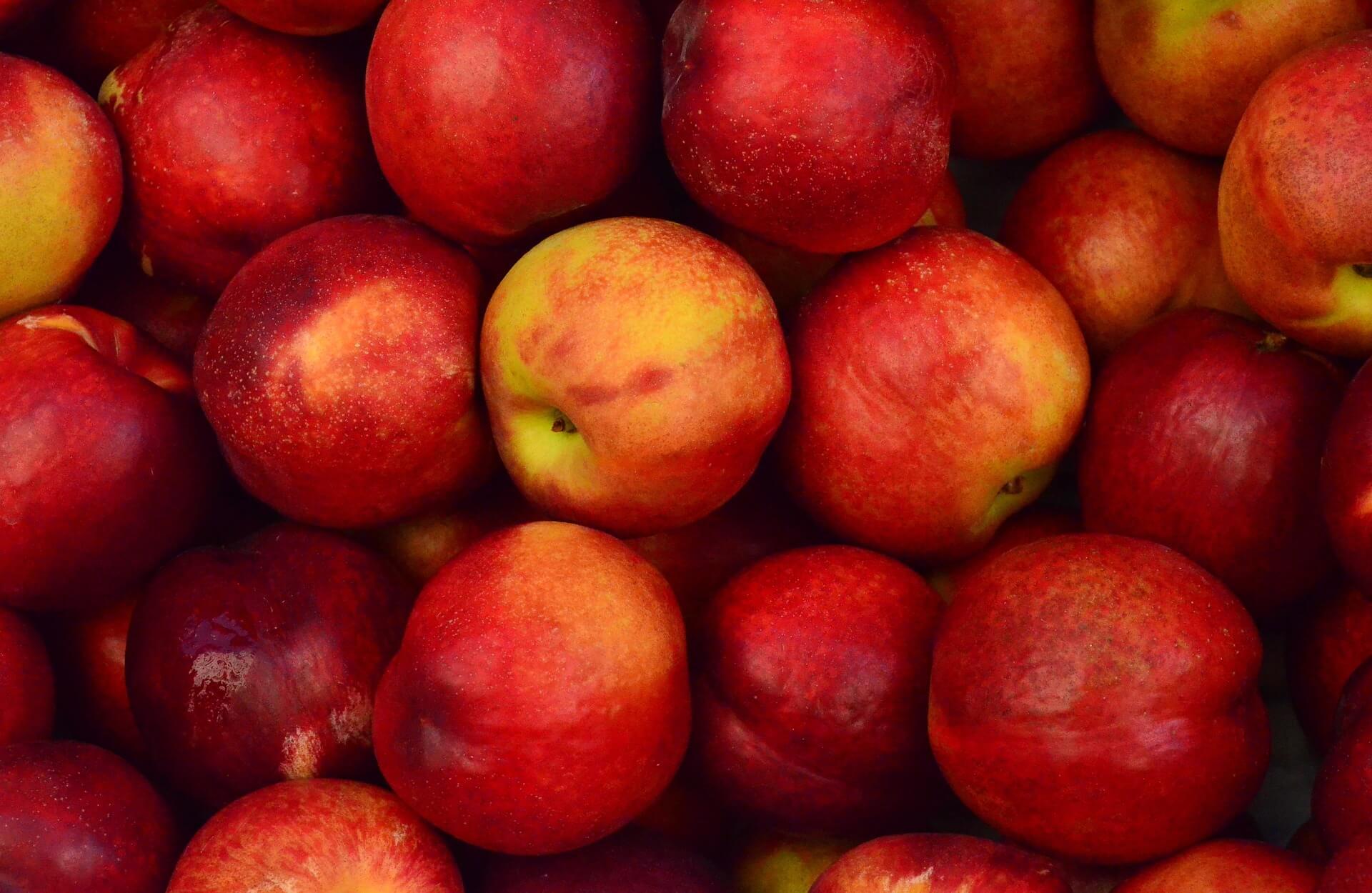 Regime monodiet pomme