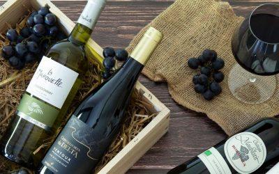 Foire aux Vins 2020 : quels vins bio choisir ?