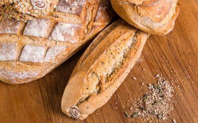 Découvrez nos pains bio !