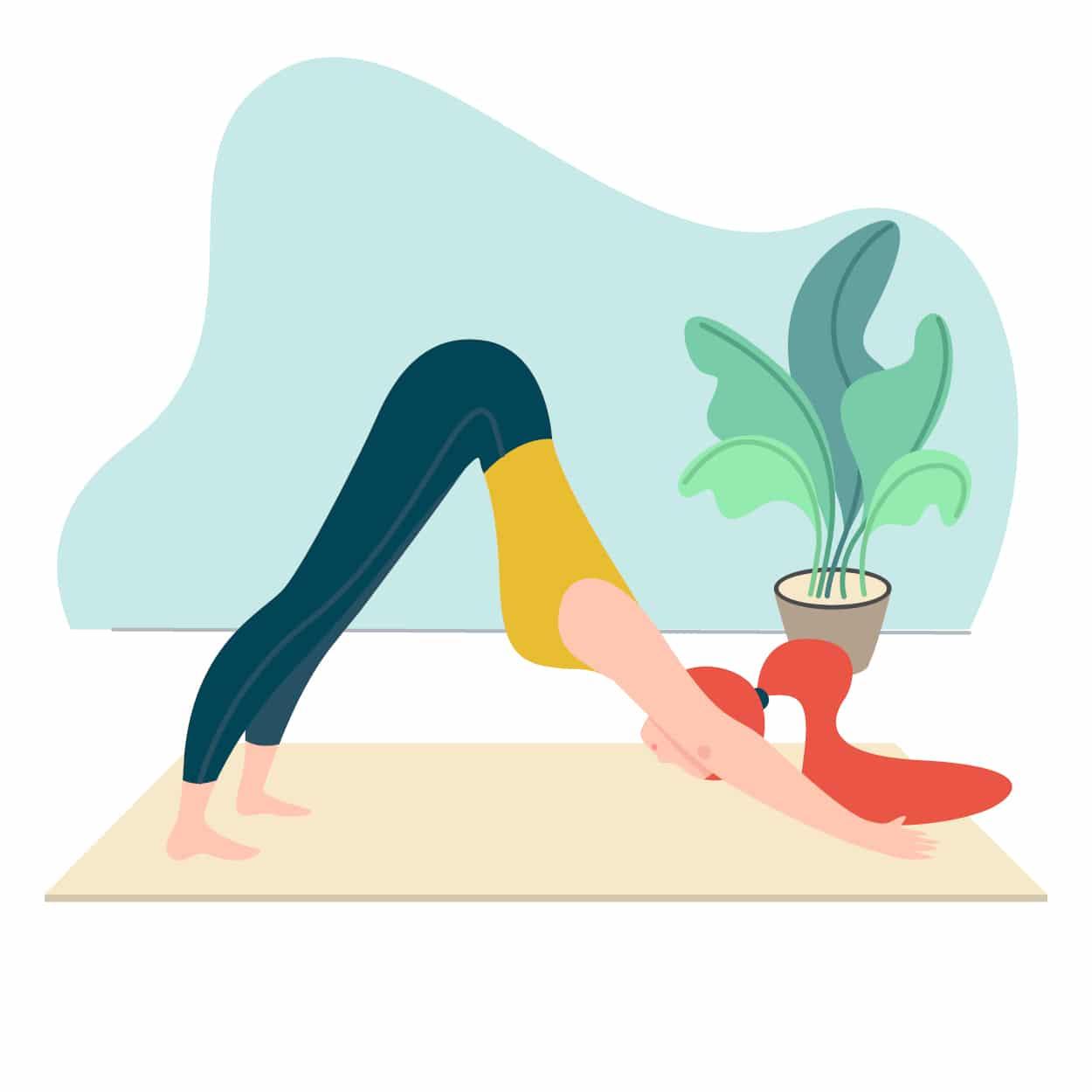 photo assiette équilibrée légumes nutrition