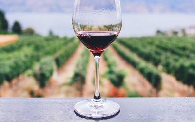 Comment associer vos mets et vins pour le plus grand plaisir de vos papilles ?